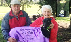 Warragul Oaks: Persistence Pays Off as Couple Lands First Trophy in 25 Years