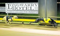 He's So Good wins Endeavour Locksmiths Warragul St Leger