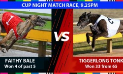 'Hot' dogs spice up Warragul Cup night